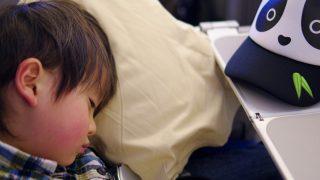 子供と飛行機『完全ガイド』