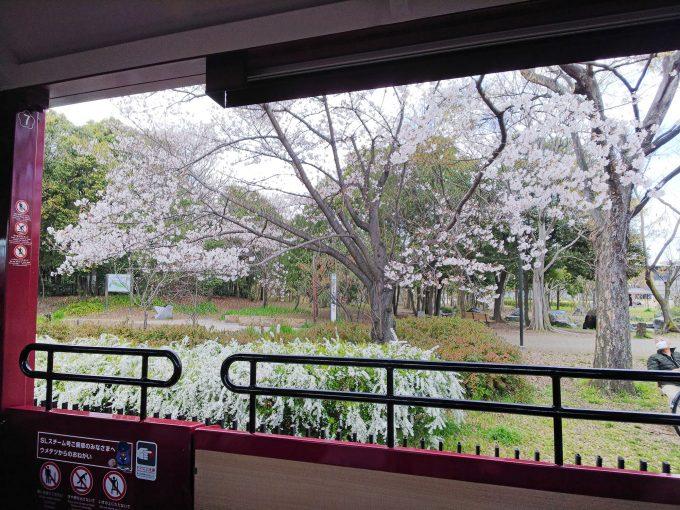 【京都鉄道博物館】SLスチーム号《車内》