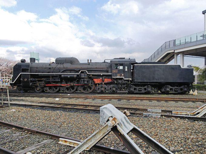 【京都鉄道博物館】展示車両(扇形車庫)《SL C61形2号機》