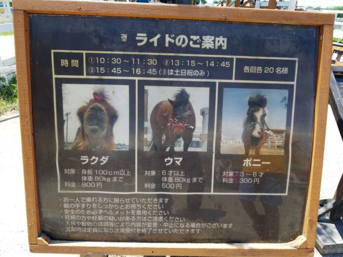 神戸どうぶつ王国のパフォーマンスショーライド